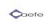Cliente de Diseño Web Rosario - DWVISUAL - Caefe S.A